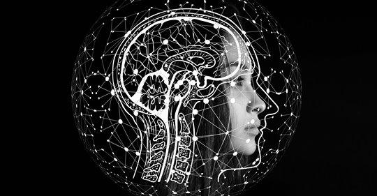 Read more about the article Caminho Neural do Emagrecimento